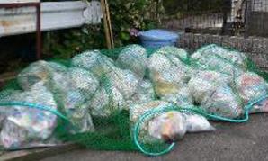 一般家庭ゴミの分解実験